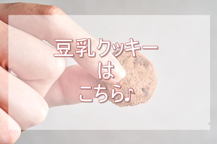 豆乳おからクッキー糖質制限中のおやつ通販 売筋ランキング3選紹介